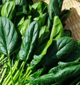 spenat och bladgrönsaker är nyttigt