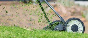 klippa gräset