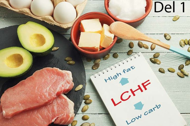 Viktnedgång med LCHF – Del 1